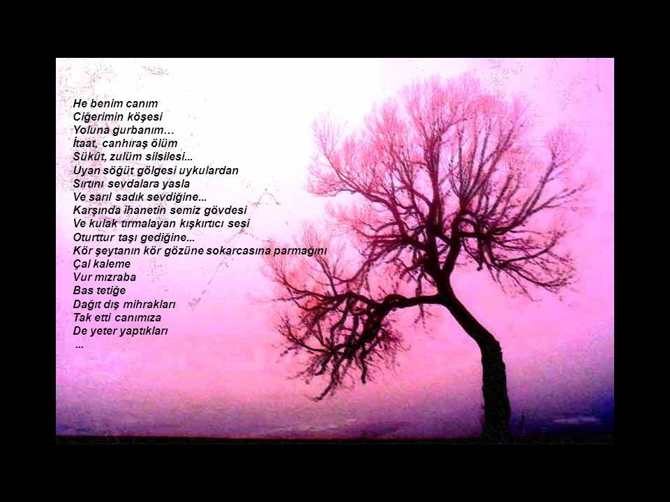 He benim canım Ciğerimin köşesi Yoluna gurbanım… İtaat, canhıraş ölüm Sükût, zulüm silsilesi...