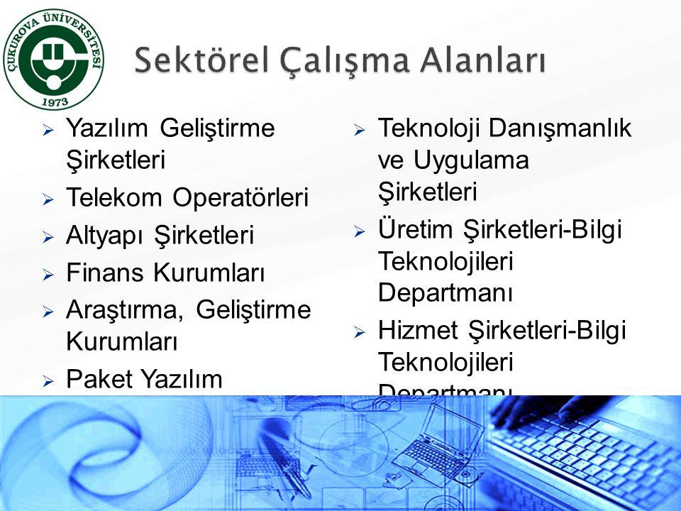  Yazılım Geliştirme Şirketleri  Telekom Operatörleri  Altyapı Şirketleri  Finans Kurumları  Araştırma, Geliştirme Kurumları  Paket Yazılım Dağıt