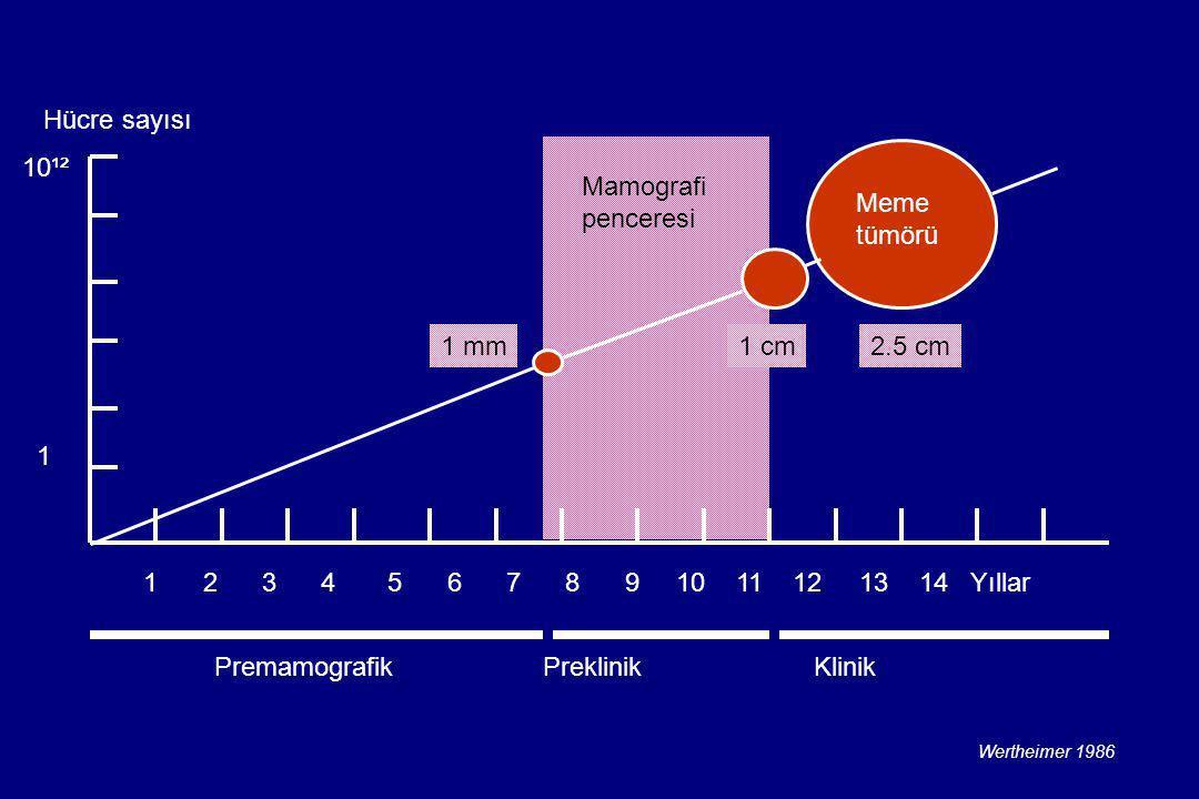 Mamografi penceresi Meme tümörü Hücre sayısı 1 2 3 4 5 6 7 8 9 10 11 12 13 14 Yıllar 10¹² 1 Premamografik Preklinik Klinik 1 mm1 cm2.5 cm Wertheimer 1