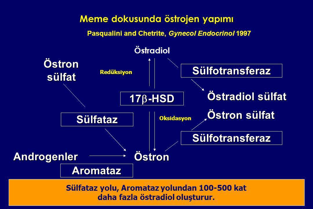 Meme dokusunda östrojen yapımı Östradiol Östron Aromataz Androgenler Sülfataz Östron sülfat Sülfotransferaz Östradiol sülfat Östron sülfat Sülfotransf