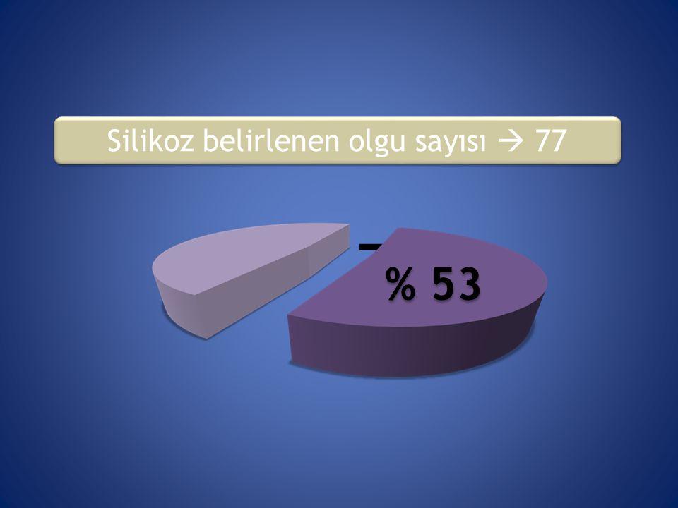 77 (%53,1) Silikoz belirlenen olgu sayısı  77 % 53