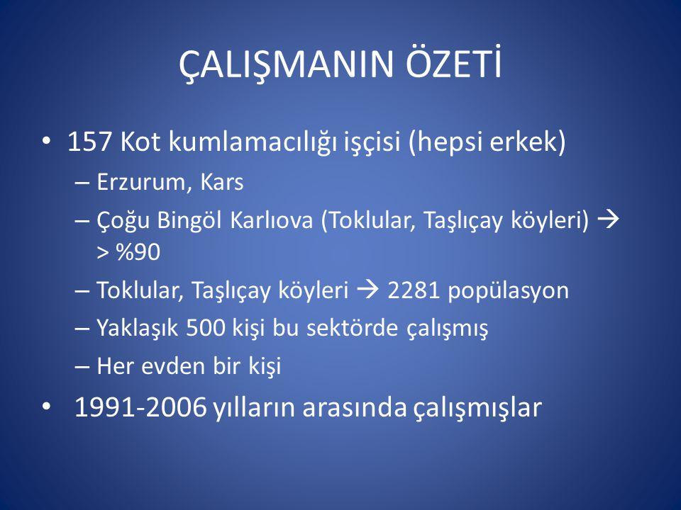 ÇALIŞMANIN ÖZETİ 157 Kot kumlamacılığı işçisi (hepsi erkek) – Erzurum, Kars – Çoğu Bingöl Karlıova (Toklular, Taşlıçay köyleri)  > %90 – Toklular, Taşlıçay köyleri  2281 popülasyon – Yaklaşık 500 kişi bu sektörde çalışmış – Her evden bir kişi 1991-2006 yılların arasında çalışmışlar