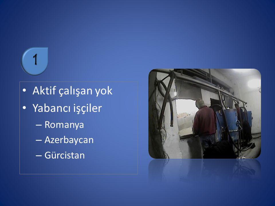 Aktif çalışan yok Yabancı işçiler – Romanya – Azerbaycan – Gürcistan 1
