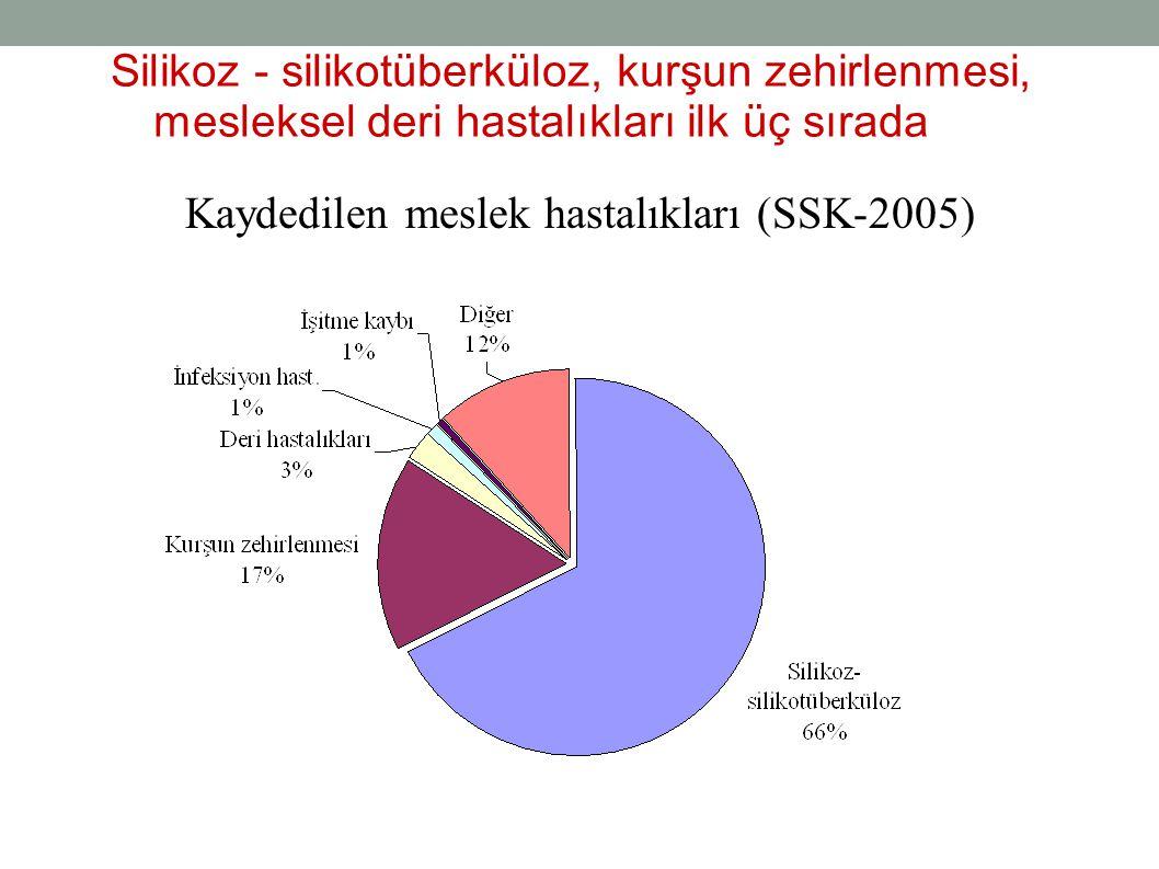 Silikoz - silikotüberküloz, kurşun zehirlenmesi, mesleksel deri hastalıkları ilk üç sırada Kaydedilen meslek hastalıkları (SSK-2005)