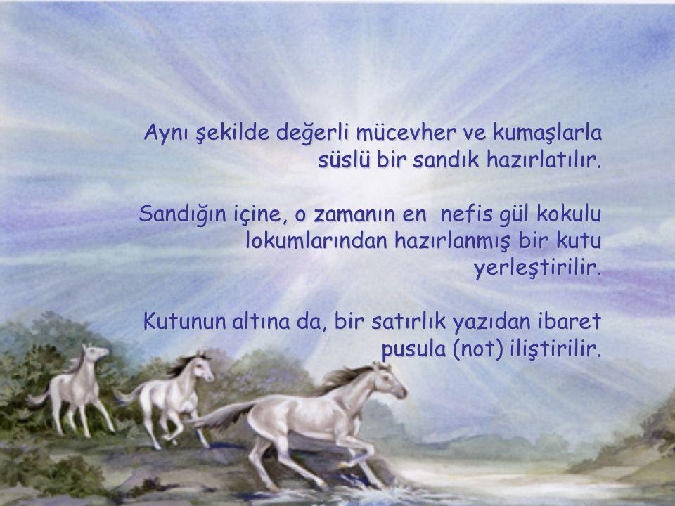 Cihan padişahı emir verir, herkes düşünsün, bu edepsizliğe, Osmanlı nın şanına yakışacak şekilde bir mukabelede bulunmalıyız. Ve çözümü yine kendisi bulur.