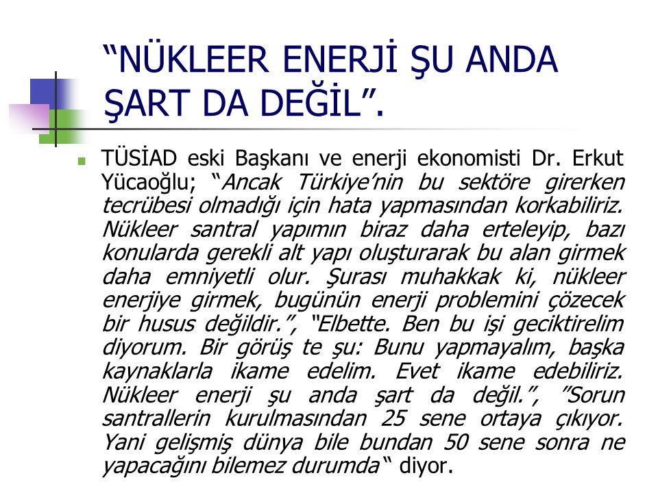 """""""NÜKLEER ENERJİ ŞU ANDA ŞART DA DEĞİL"""". TÜSİAD eski Başkanı ve enerji ekonomisti Dr. Erkut Yücaoğlu; """"Ancak Türkiye'nin bu sektöre girerken tecrübesi"""