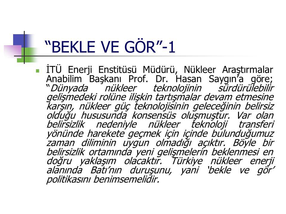 """""""BEKLE VE GÖR""""-1 İTÜ Enerji Enstitüsü Müdürü, Nükleer Araştırmalar Anabilim Başkanı Prof. Dr. Hasan Saygın'a göre; """"Dünyada nükleer teknolojinin sürdü"""