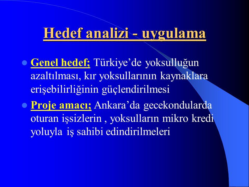 Hedef analizi - uygulama Genel hedef; Türkiye'de yoksulluğun azaltılması, kır yoksullarının kaynaklara erişebilirliğinin güçlendirilmesi Proje amacı;