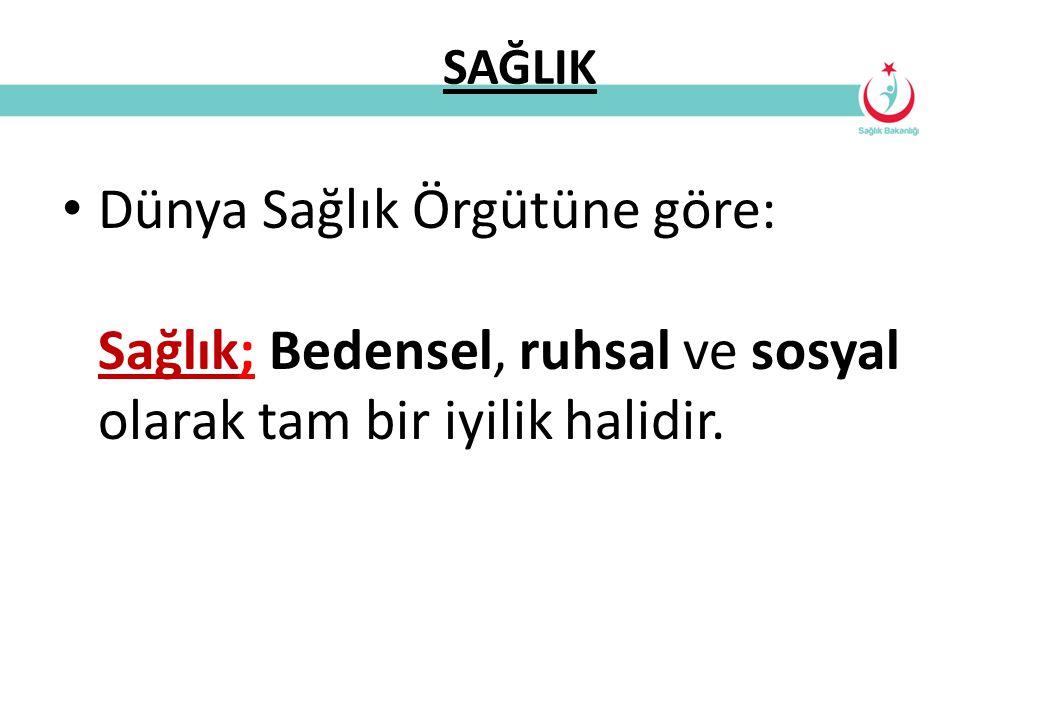 Türkiye'de 15-55 Yaş Arası En Yaygın Hastalıklar 1.