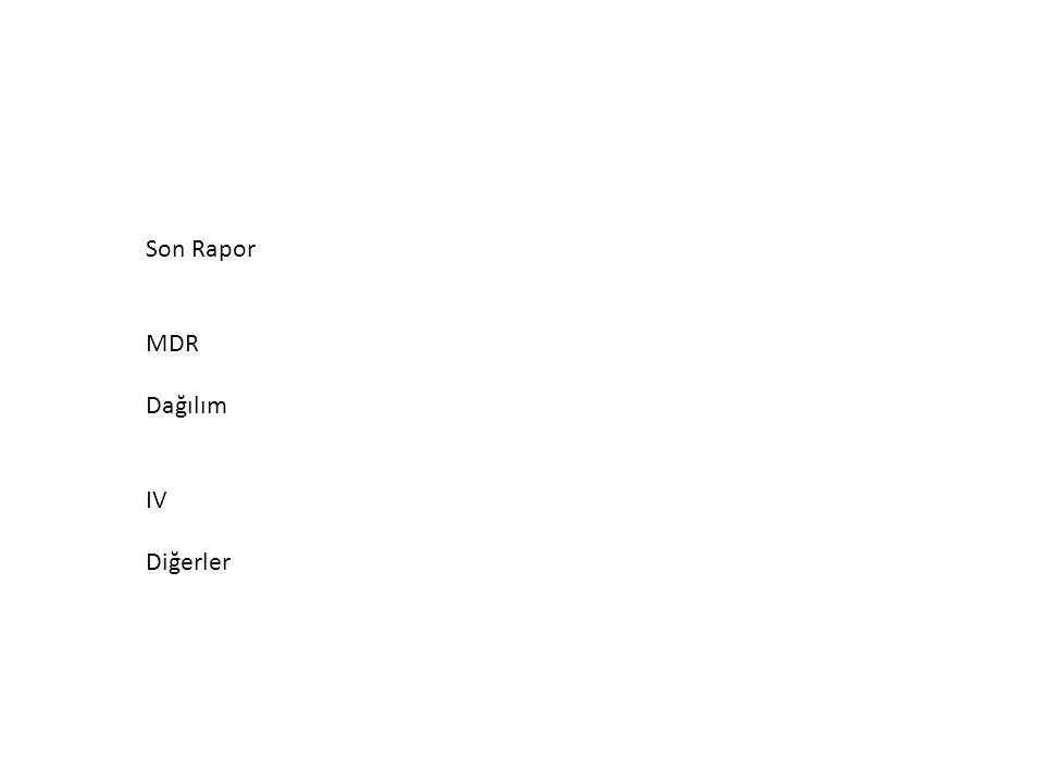 Son Rapor MDR Dağılım IV Diğerler