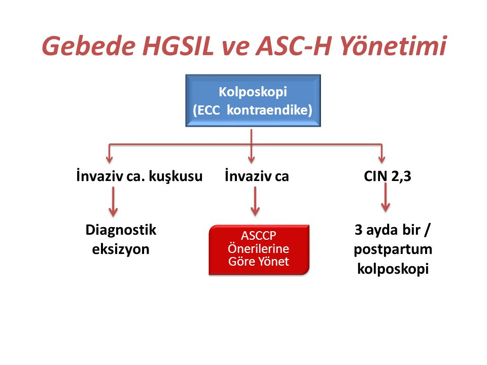 Gebede HGSIL ve ASC-H Yönetimi CIN 2,3 Kolposkopi (ECC kontraendike) İnvaziv ca. kuşkusuİnvaziv ca 3 ayda bir / postpartum kolposkopi Diagnostik eksiz