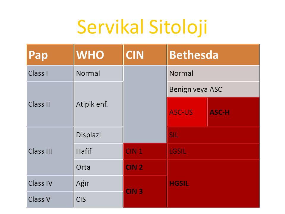 Servikal Sitoloji PapWHOCINBethesda Class INormal Class IIAtipik enf. Benign veya ASC ASC-USASC-H Class III DisplaziSIL HafifCIN 1LGSIL OrtaCIN 2 HGSI