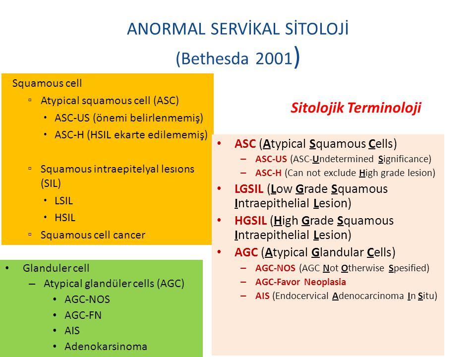 Squamous cell ▫ Atypical squamous cell (ASC)  ASC-US (önemi belirlenmemiş)  ASC-H (HSIL ekarte edilememiş) ▫ Squamous intraepitelyal lesıons (SIL) 