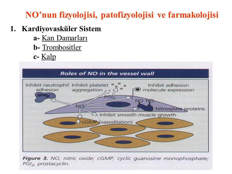 NO'nun fizyolojisi, patofizyolojisi ve farmakolojisi 1.Kardiyovasküler Sistem a- Kan Damarları b- Trombositler c- Kalp