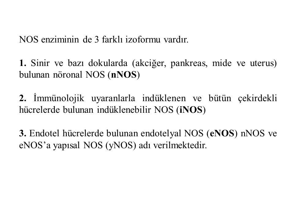 NOS enziminin de 3 farklı izoformu vardır.1.