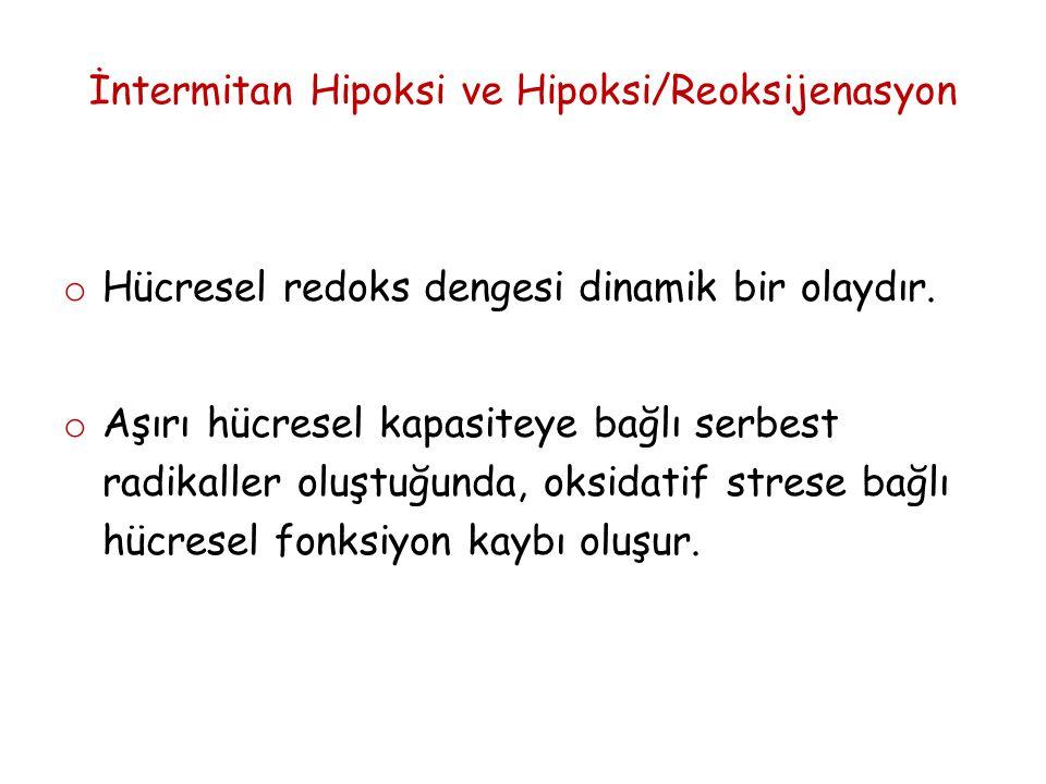 İntermittent Hipoksi/Reoksijenasyon o Bu hipoksi/reoksijenasyonun sıklığının mi .