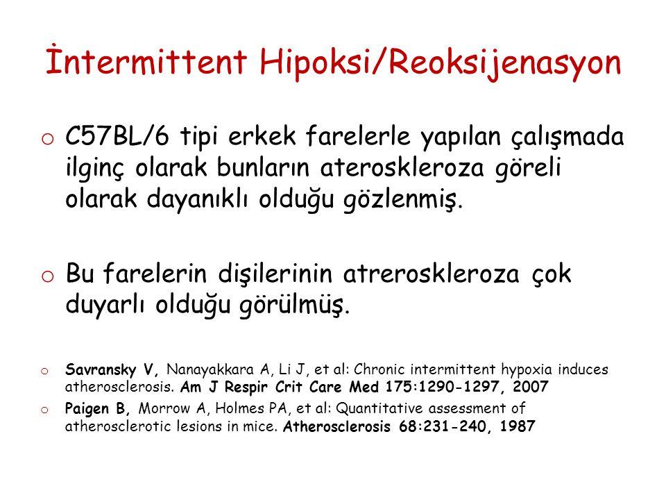 İntermittent Hipoksi/Reoksijenasyon o C57BL/6 tipi erkek farelerle yapılan çalışmada ilginç olarak bunların ateroskleroza göreli olarak dayanıklı olduğu gözlenmiş.