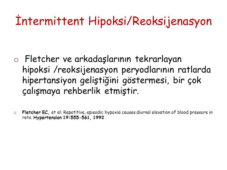 İntermittent Hipoksi/Reoksijenasyon o Fletcher ve arkadaşlarının tekrarlayan hipoksi /reoksijenasyon peryodlarının ratlarda hipertansiyon geliştiğini göstermesi, bir çok çalışmaya rehberlik etmiştir.