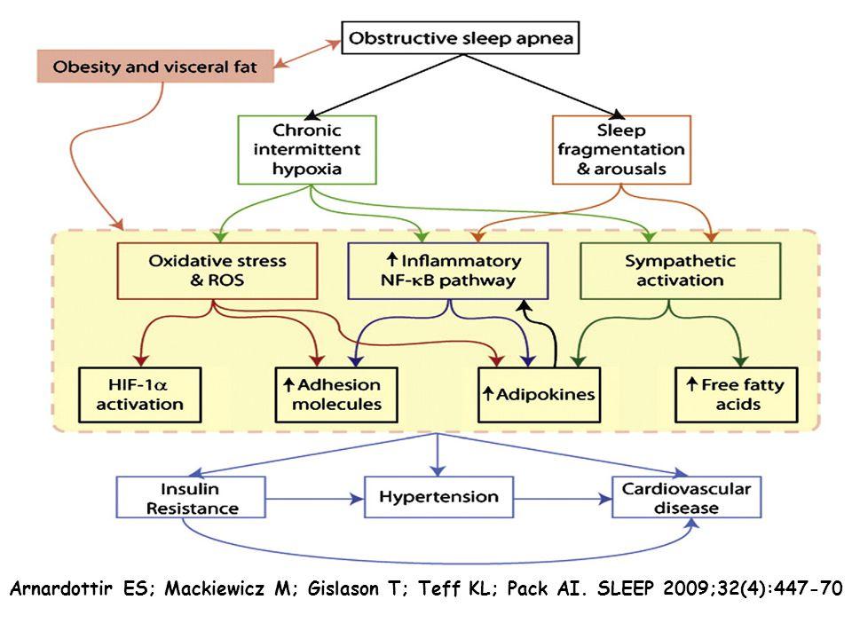 Arnardottir ES;Mackiewicz M; GislasonT,Teff KL, Pack AI. SLEEP 2009;32(4):447-70