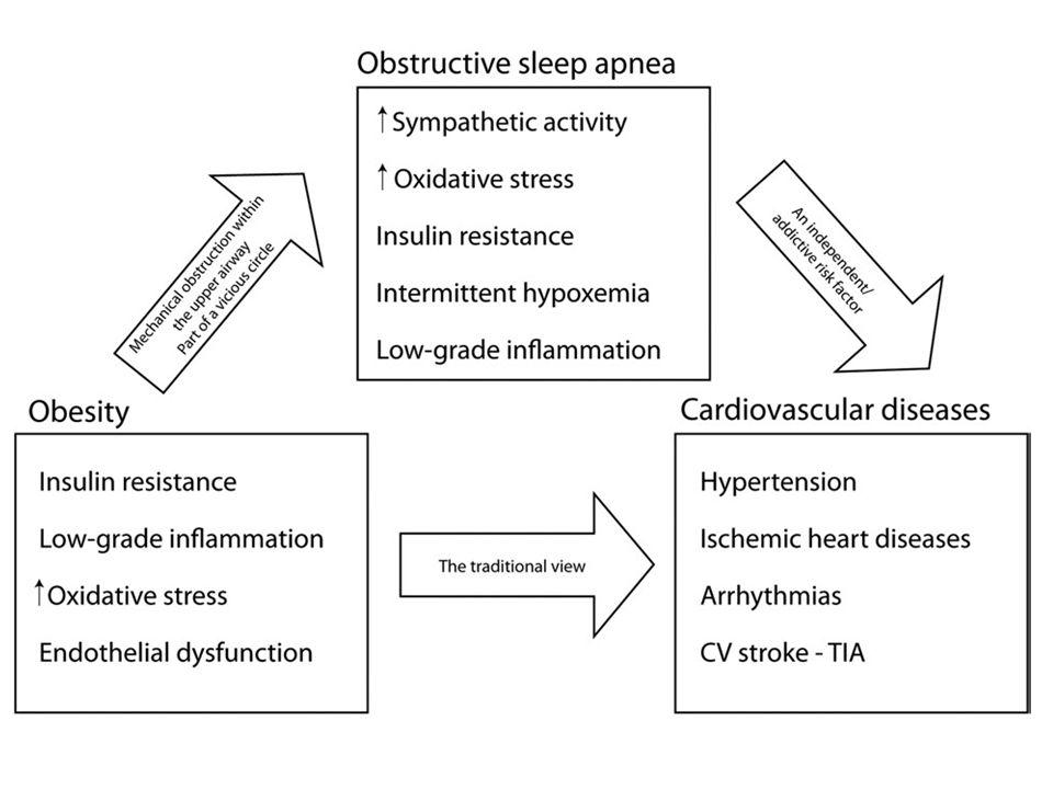 İntermitan Hipoksi ve Hipoksi/Reoksijenasyon o Obstrüktif Uyku Apne Sendromunun oksidatif stres hastalığı olduğu gösterildi (Lavie et al.