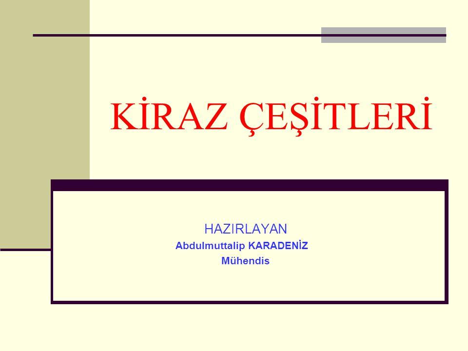 KİRAZ ÇEŞİTLERİ HAZIRLAYAN Abdulmuttalip KARADENİZ Mühendis