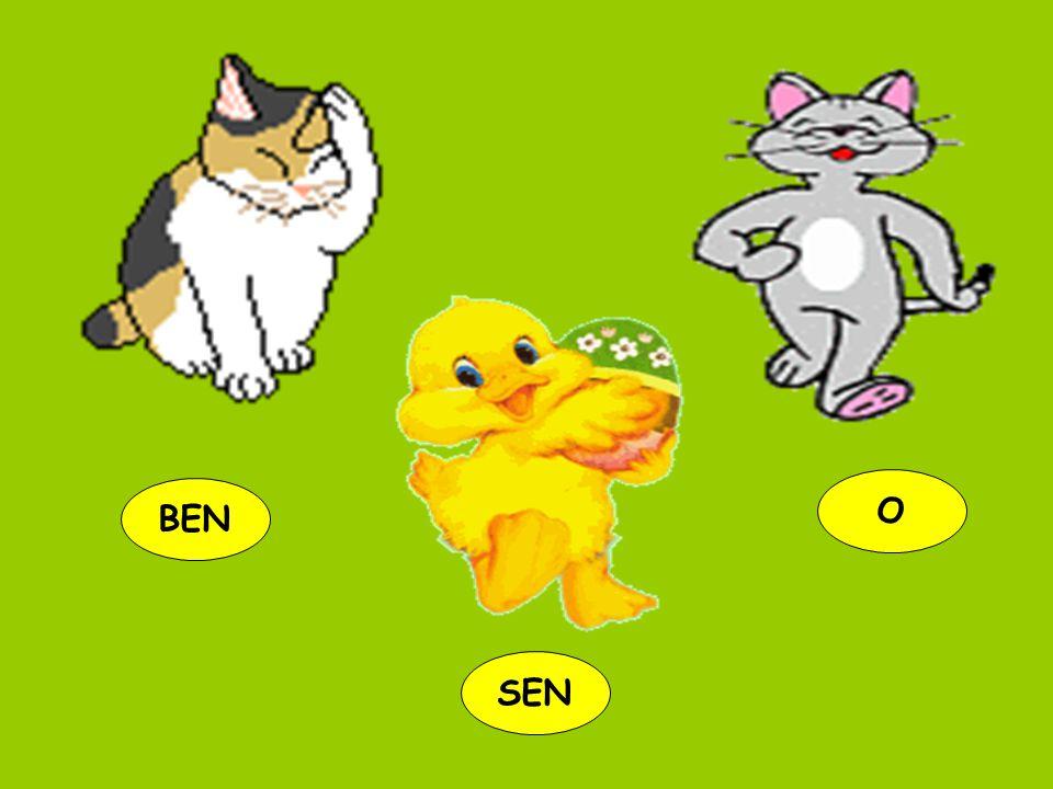 BEN O SEN
