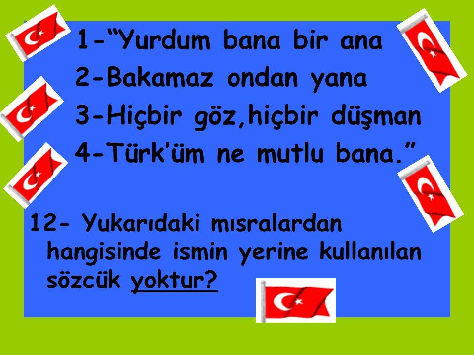"""1-""""Yurdum bana bir ana 2-Bakamaz ondan yana 3-Hiçbir göz,hiçbir düşman 4-Türk'üm ne mutlu bana."""" 12- Yukarıdaki mısralardan hangisinde ismin yerine ku"""