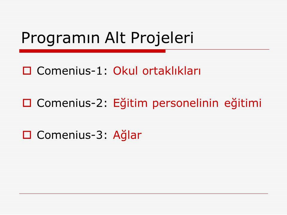 Programın Alt Projeleri  Comenius-1: Okul ortaklıkları  Comenius-2: Eğitim personelinin eğitimi  Comenius-3: Ağlar