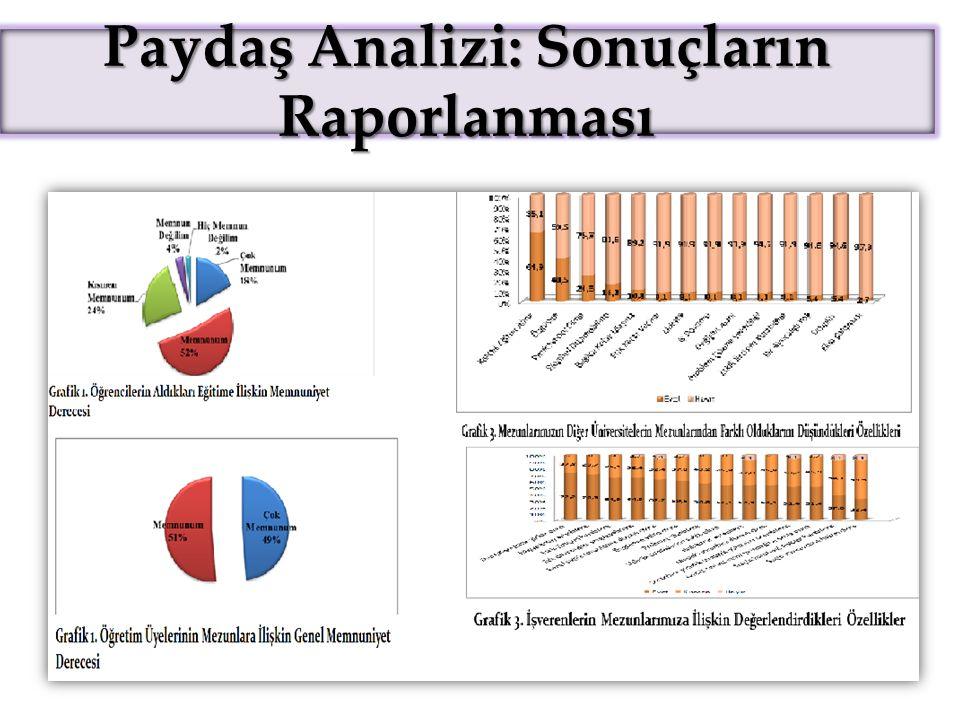 Paydaş Analizi: Sonuçların Raporlanması