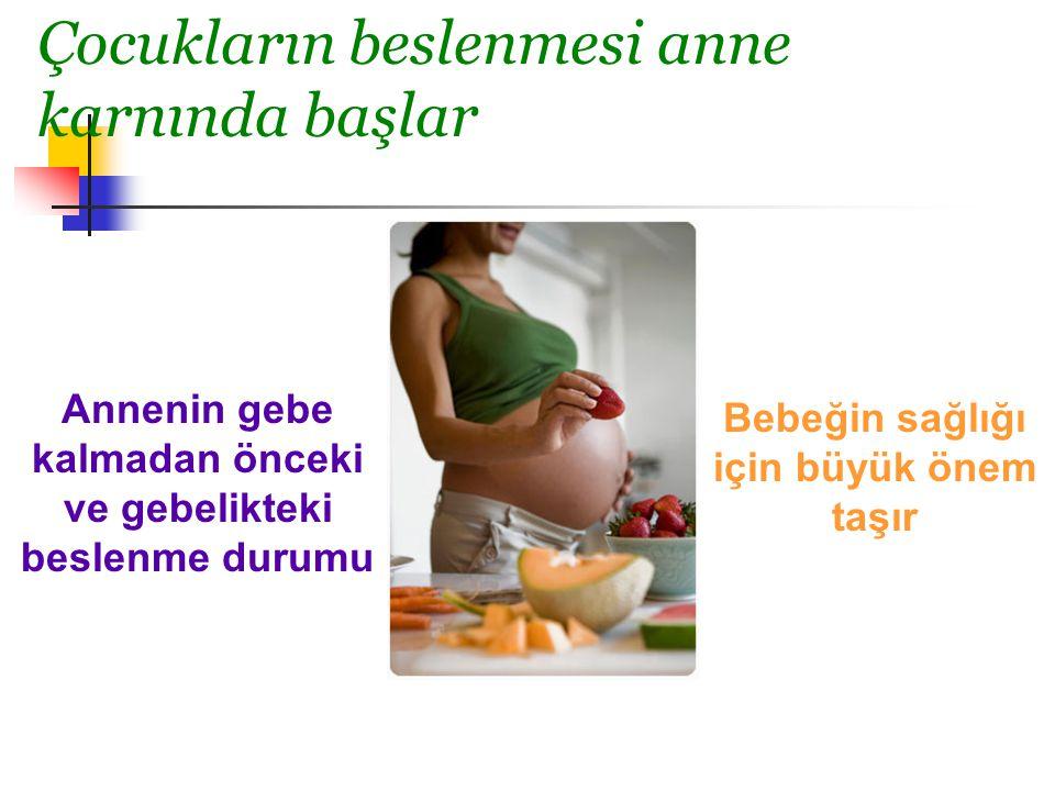 Çocukların beslenmesi anne karnında başlar Annenin gebe kalmadan önceki ve gebelikteki beslenme durumu Bebeğin sağlığı için büyük önem taşır