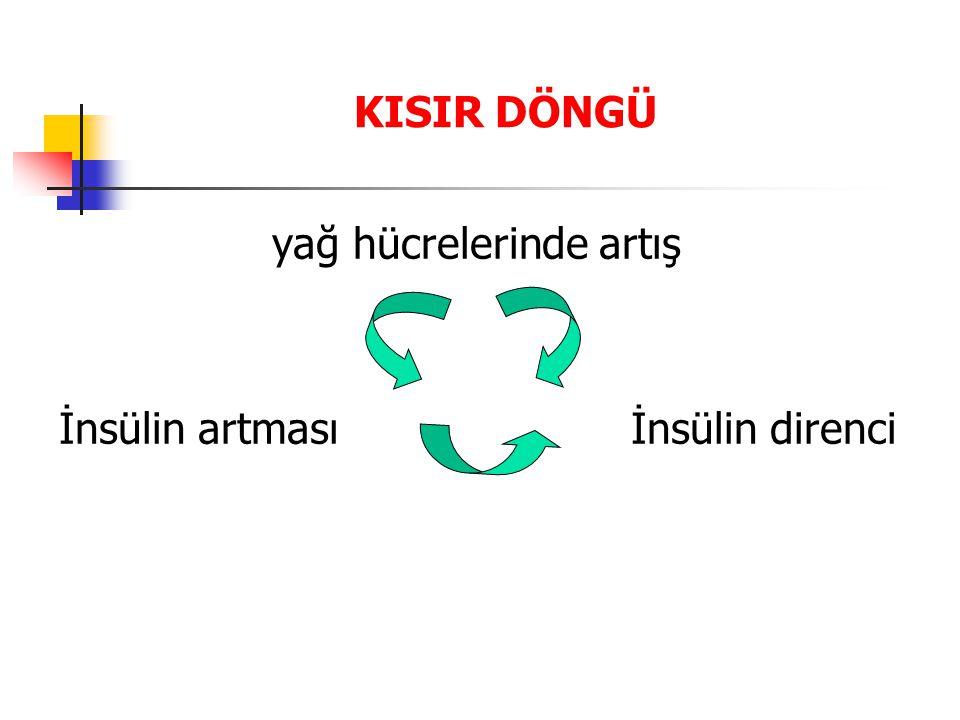 yağ hücrelerinde artış İnsülin artması İnsülin direnci KISIR DÖNGÜ