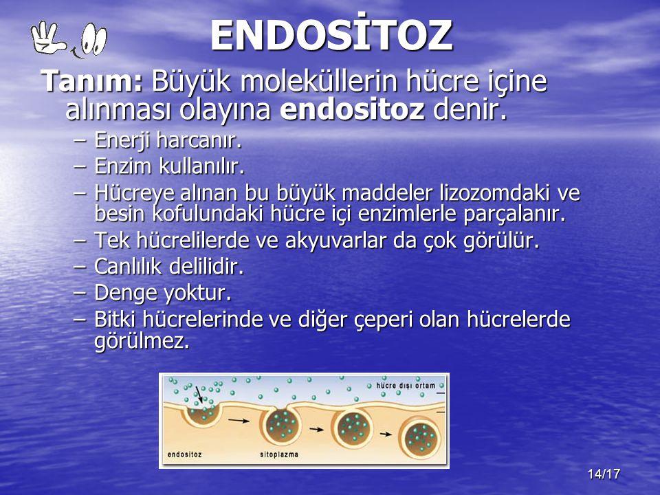 14/17ENDOSİTOZ Tanım: Büyük moleküllerin hücre içine alınması olayına endositoz denir. –Enerji harcanır. –Enzim kullanılır. –Hücreye alınan bu büyük m