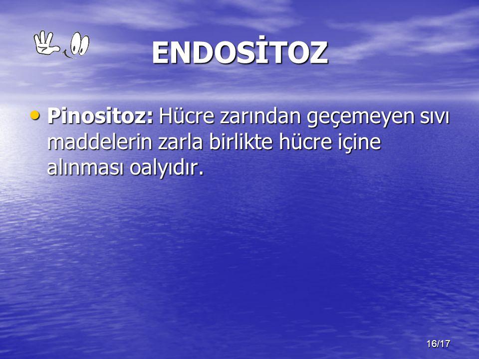 16/17 ENDOSİTOZ Pinositoz: Hücre zarından geçemeyen sıvı maddelerin zarla birlikte hücre içine alınması oalyıdır. Pinositoz: Hücre zarından geçemeyen