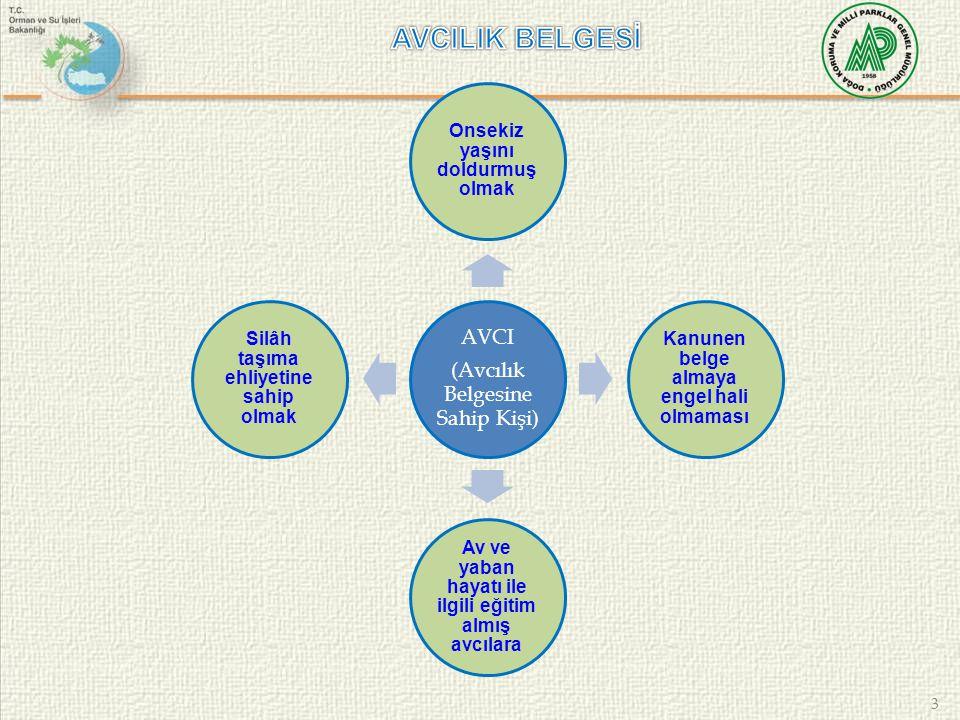3 AVCI (Avcılık Belgesine Sahip Kişi) Onsekiz yaşını doldurmuş olmak Kanunen belge almaya engel hali olmaması Av ve yaban hayatı ile ilgili eğitim alm