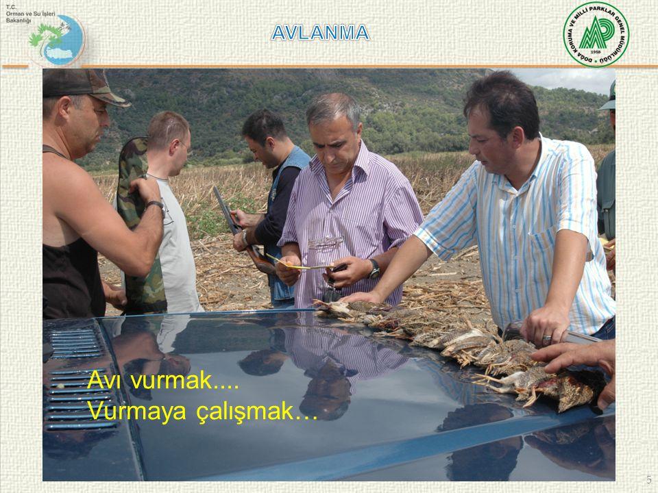 46 AVCILIK BELGESİ 1- Avcılık Belgesi Geçerlilik Süresi..