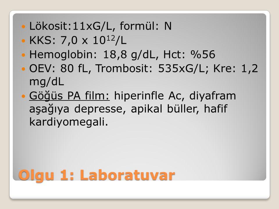 Lökosit:11xG/L, formül: N KKS: 7,0 x 10 12 /L Hemoglobin: 18,8 g/dL, Hct: %56 OEV: 80 fL, Trombosit: 535xG/L; Kre: 1,2 mg/dL Göğüs PA film: hiperinfle