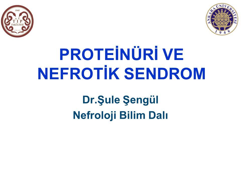 Proteinüri Tayin Yöntemleri (2)   SEMİKANTİTATİF YÖNTEMLER Sülfosalisilik asit (SSA) testi: İdrardaki tüm proteinleri saptar ve duyarlılığı 5-10 mg/dl'dir İdrar çubuğu negatif, SSA pozitif ise non-albumin proteinüri akla gelmeli 1 ölçü idrar supernatantı + 3 ölçü SSA (%3) karıştırılır ve bulanıklık derecelendirilir 0-----bulanıklık yok Eser-hafif bulanıklık (1-10 mg/dl) 1+--arkasından yazı okunabilen bulanıklık (15-30 mg/dl) 2+--presipitat oluşmadan beyaz bulutlanma (40-100 mg/dl) 3+--belirgin presipitatla yoğun beyaz bulutlanma (150-300 mg/dl) 4+--çökelti oluşması (500 mg/dl)