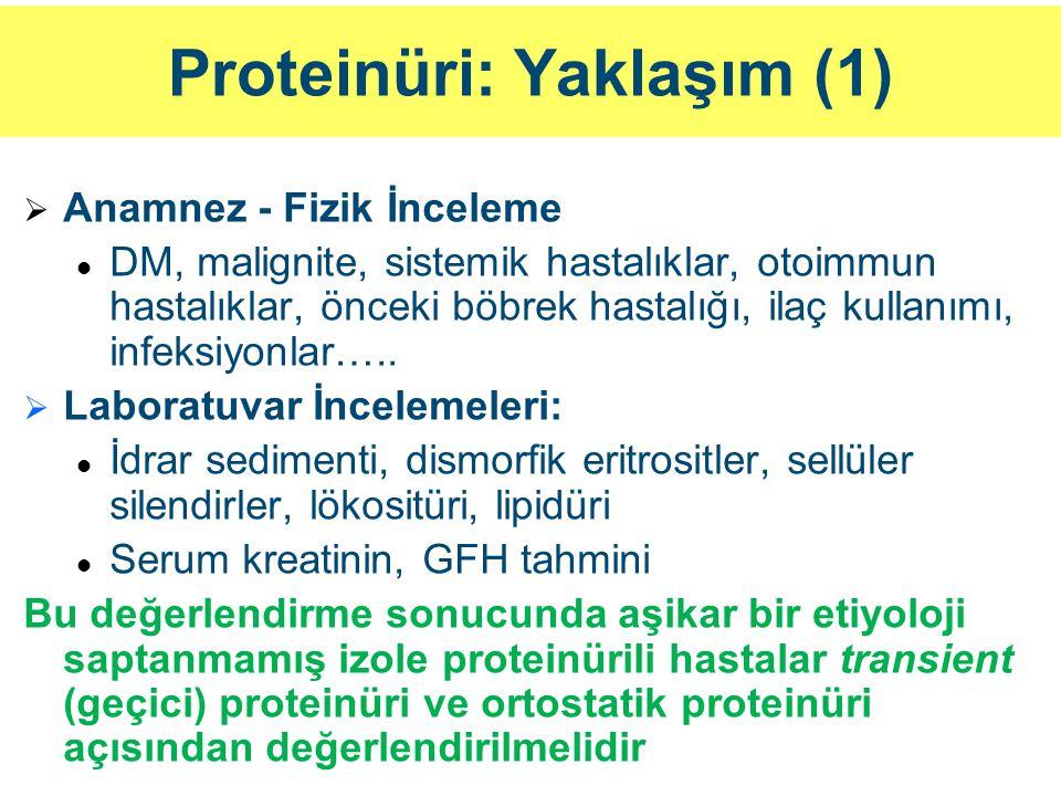 Proteinüri: Yaklaşım (1)   Anamnez - Fizik İnceleme DM, malignite, sistemik hastalıklar, otoimmun hastalıklar, önceki böbrek hastalığı, ilaç kullanı