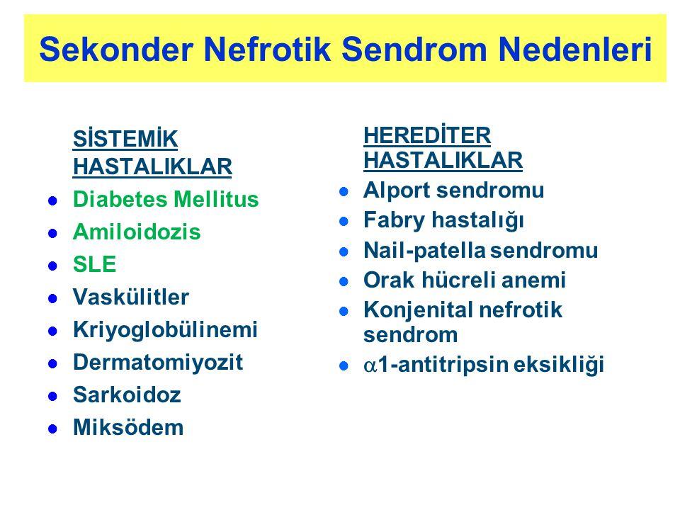 SİSTEMİK HASTALIKLAR l l Diabetes Mellitus l l Amiloidozis l l SLE l l Vaskülitler l l Kriyoglobülinemi l l Dermatomiyozit l l Sarkoidoz l l Miksödem