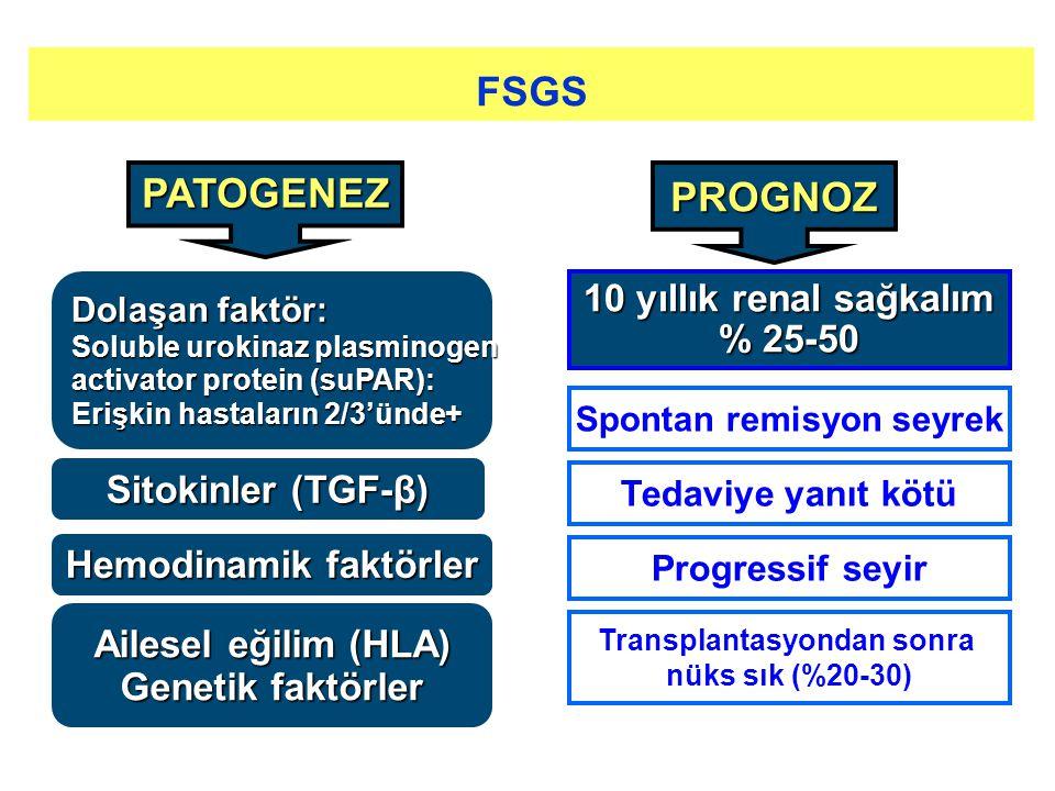 PATOGENEZ Sitokinler (TGF-β) Hemodinamik faktörler Ailesel eğilim (HLA) Genetik faktörler PROGNOZ 10 yıllık renal sağkalım % 25-50 Spontan remisyon se