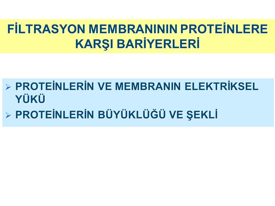 CHARGE-SELECTIVITY (elektriksel yük) SIZE-SELECTIVITY (büyüklük) Endotelyal hücrelerde sialoglikoproteinler GBM da h eparan sülfat proteoglikanlar negatif yük NŞ da negatif yüklü proteinlerin (albümin) filtrasyonunun engellenmesi Endotelyal hücreler arasındaki pencereler (375-400 Å) GBM'daki porlar (40-45 Å) Epitelyal hücre ayaksı çıkıntıları arasındaki slit diyafram 150.000 daltonun üzerindeki proteinlerin geçişini engeller 60.000-150.000 dalton arasındaki proteinlerin geçişini engeller