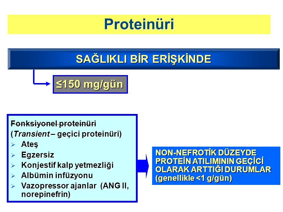 Proteinüri Fonksiyonel proteinüri (Transient – geçici proteinüri)  Ateş  Egzersiz  Konjestif kalp yetmezliği  Albümin infüzyonu  Vazopressor ajan