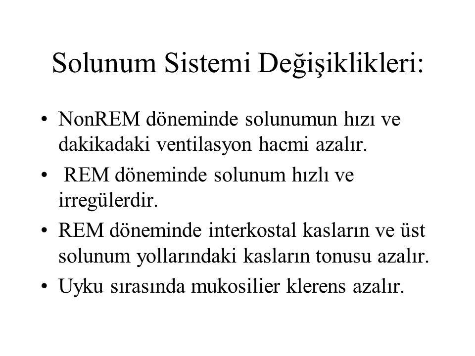 Solunum Sistemi Değişiklikleri: NonREM döneminde solunumun hızı ve dakikadaki ventilasyon hacmi azalır.