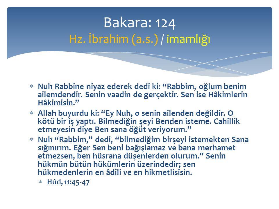  Nuh Rabbine niyaz ederek dedi ki: Rabbim, oğlum benim ailemdendir.