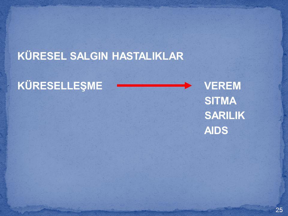 KÜRESEL SALGIN HASTALIKLAR KÜRESELLEŞME VEREM SITMA SARILIK AIDS 25