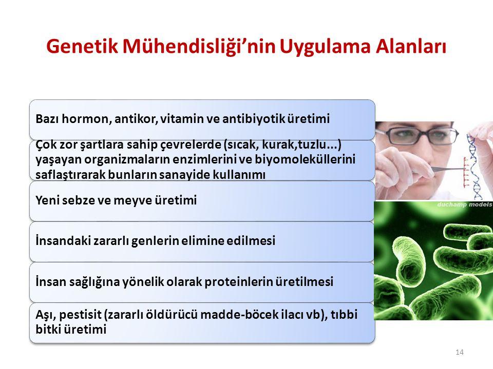 Genetik Mühendisliği'nin Uygulama Alanları Bazı hormon, antikor, vitamin ve antibiyotik üretimi Çok zor şartlara sahip çevrelerde (sıcak, kurak,tuzlu.