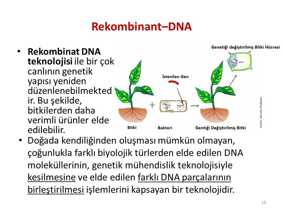 Rekombinant–DNA Rekombinat DNA teknolojisi ile bir çok canlının genetik yapısı yeniden düzenlenebilmekted ir. Bu şekilde, bitkilerden daha verimli ürü