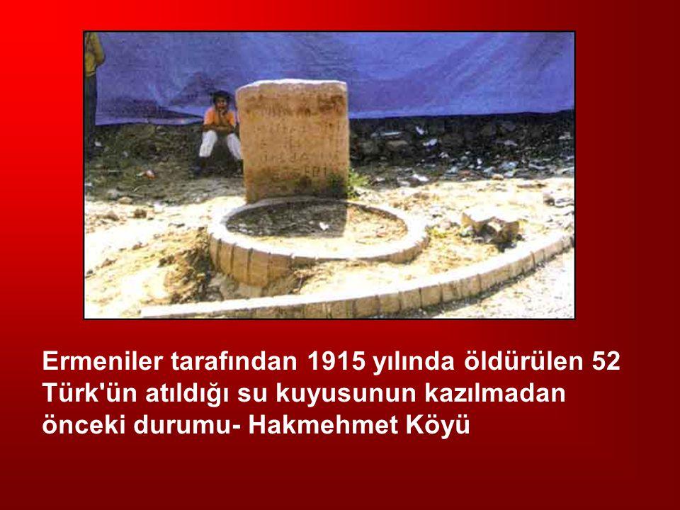 Ermeniler tarafından 1915 yılında öldürülen 52 Türk'ün atıldığı su kuyusunun kazılmadan önceki durumu- Hakmehmet Köyü