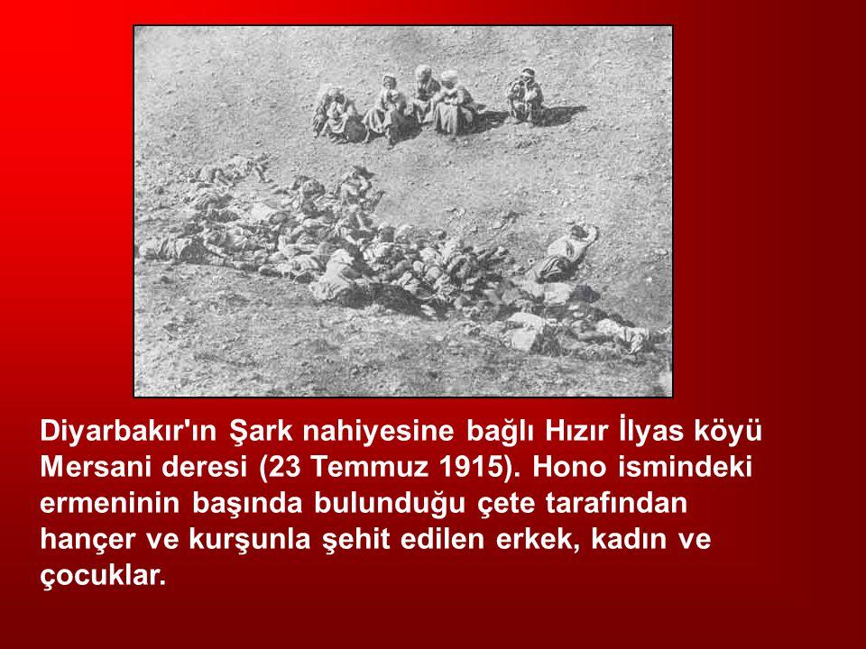 Diyarbakır'ın Şark nahiyesine bağlı Hızır İlyas köyü Mersani deresi (23 Temmuz 1915). Hono ismindeki ermeninin başında bulunduğu çete tarafından hançe