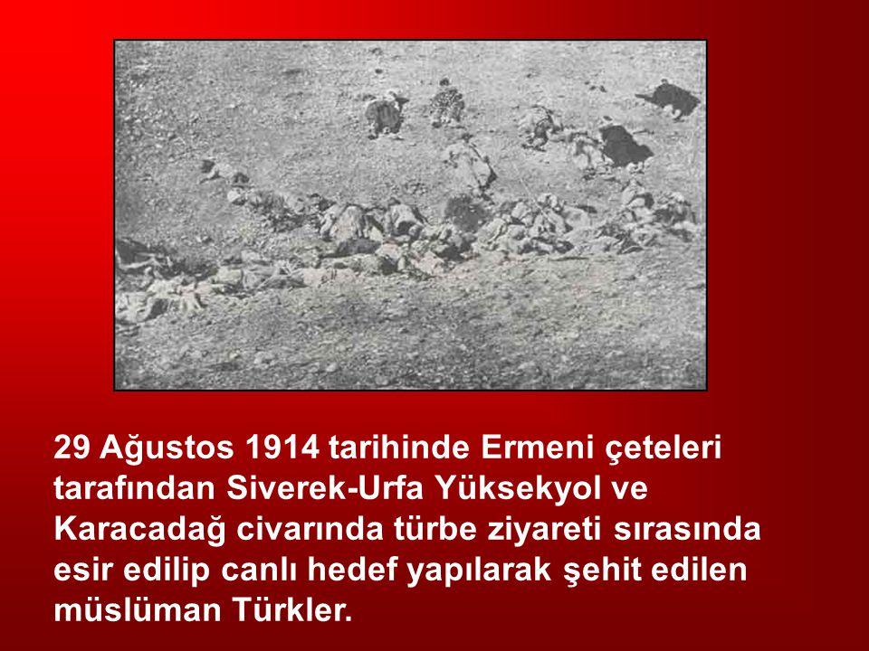 29 Ağustos 1914 tarihinde Ermeni çeteleri tarafından Siverek-Urfa Yüksekyol ve Karacadağ civarında türbe ziyareti sırasında esir edilip canlı hedef ya